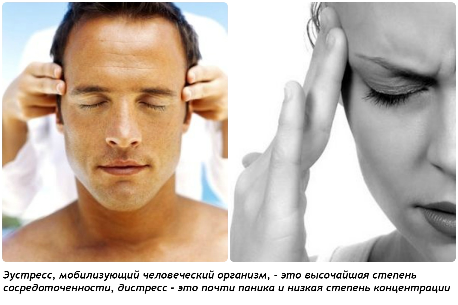 Природа стресса управление стрессом
